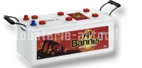 Autobaterie BANNER BUFFALO BULL SHD 12 V 110 Ah 760 A SHD 610 40